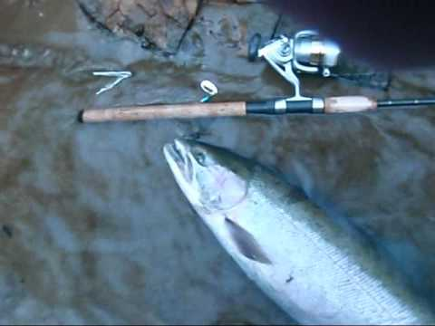 Fishing alsea river youtube for Alsea river fishing report