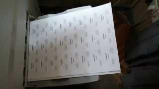 Печать двусторонних визиток, Xerox 700i, Типография Авалон-принт, Киев(, 2015-04-07T20:23:42.000Z)