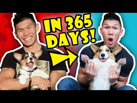 BEST OF Ryen & Gatsby in 365 DAYS    Life After College