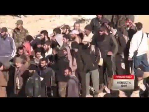 Видео: УБЛЮДКИ ДИКИЕ ИГИЛ ! ИГИЛ публично ИЗУРДОВАЛИ своих 20 боевиков за дезертирство в Ираке