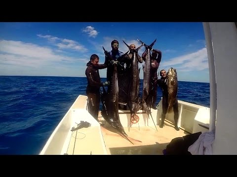 Madagascar Spearfishing Escape To AFRICA 2014