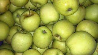 Замороженные яблоки. Заморозка яблок на зиму.