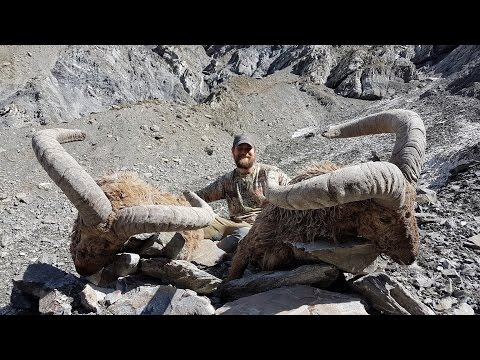 DAGESTAN TUR HUNTING STEPHAN SKAGGS & TURKISH FRONTIER