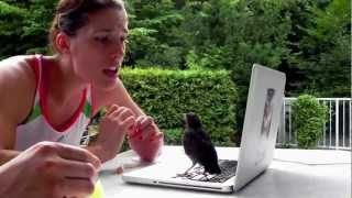"""Live chat with """"Petko"""" Andrea Petkovic and the Bird"""