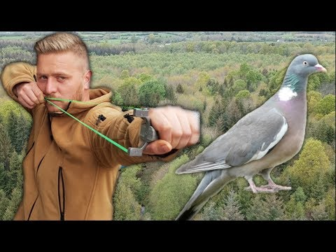 Slingshot Hunting | Bushcraft Cooking