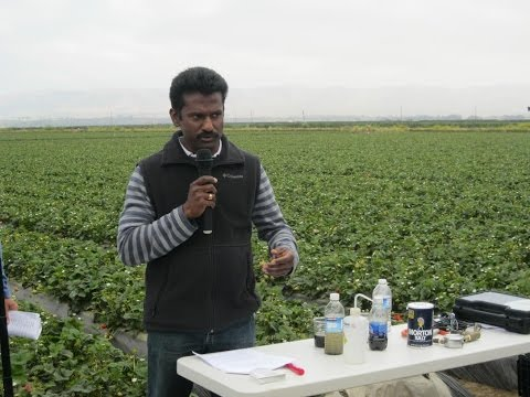 This Indian Scientist is helping Farmers in California - Dr Surendra Dara