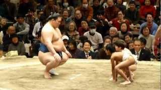 ちびっこも外人力士多し!こども相撲(第37回日本大相撲トーナメント) thumbnail