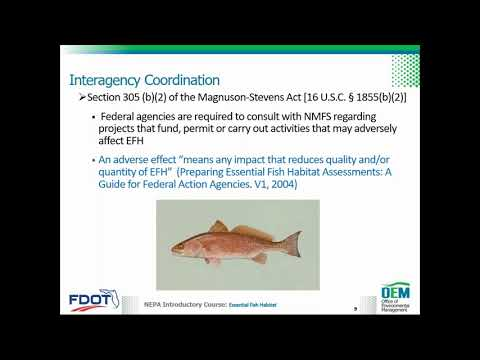 Essential Fish Habitat Overview To Support PD&E