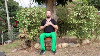20 min Gentle Chair Yoga with Jacob Cino