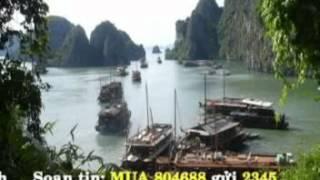 Hoàng Hôn Màu Tím-An Thanh