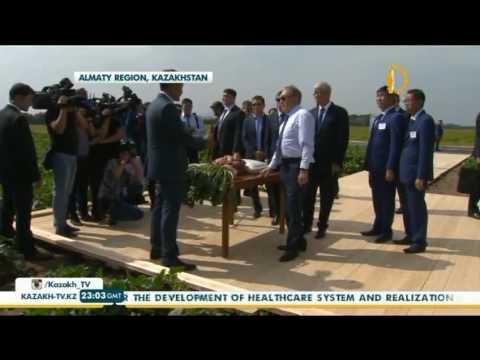 Nazarbayev paid working visit to Almaty region - Kazakh TV