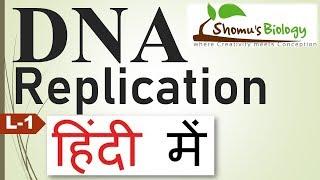 DNA replication in hindi
