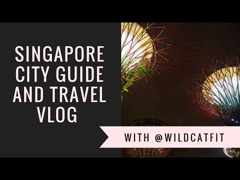 Singapore City Guide and Travel Vlog: Things to do in Singapore