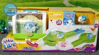 Распаковка игры Маленькие Домашние Животные Мышка - Unpacking toys Little Live Pets Mouse House