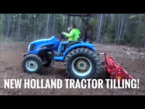 Kevin's New Holland tractor running a tiller and Tater in on the action