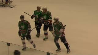Хоккей ЛНХЛ 1/2 Айсберг - Антикор   06.04.2018 г. 2 пер. Пермь