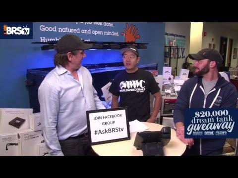 $20,000 Dream Tank Giveaway LIVE!  | BRS, WWC & R2R