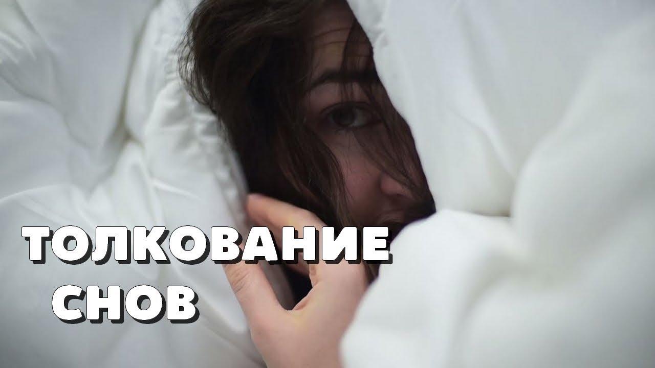 Толкование сна в соннике: сонник домохозяйки.