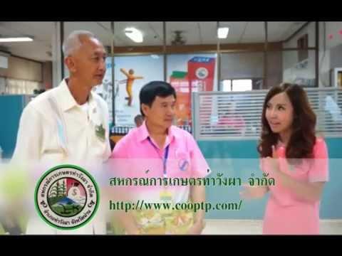 VTR - ศูนย์การเรียนรู้ สหกรณ์การเกษตรท่าวังผา จำกัด