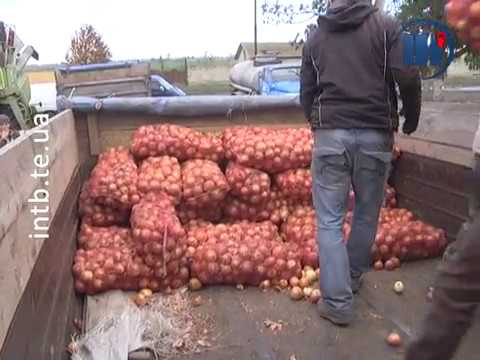 Телеканал ІНТБ: З Тернопільщини для захисників відправили більше 30 тонн харчів