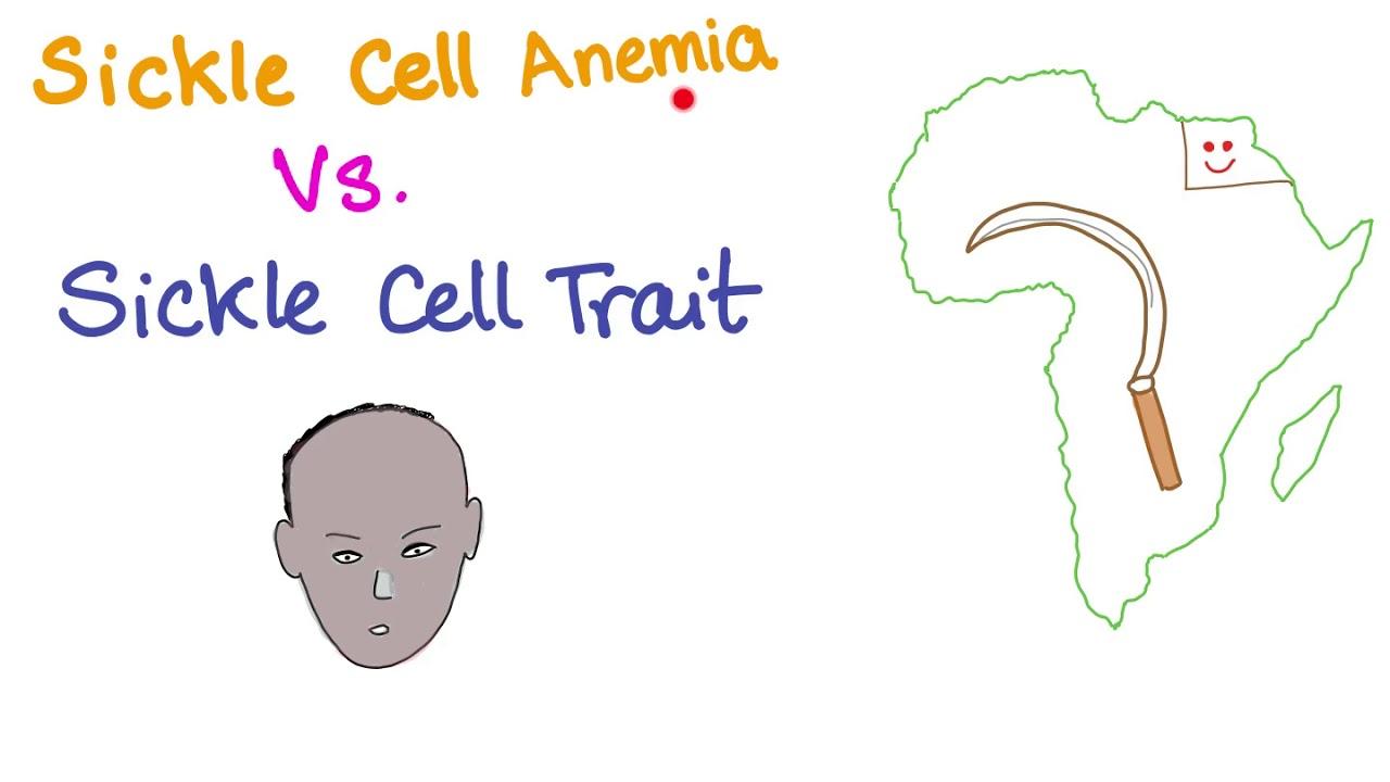 Sickle Cell Anemia Vs Sickle Cell Trait (comparison)
