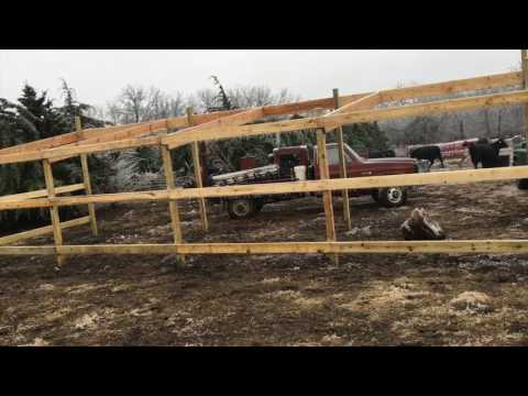 Building A Cattle Shed PT 1