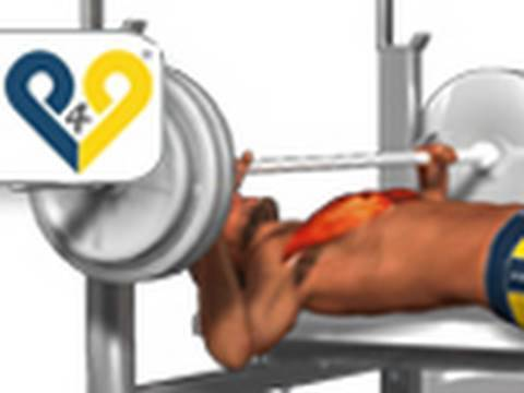 Chest Exercises: Bench Press<a href='/yt-w/9l9guSIjnZY/chest-exercises-bench-press.html' target='_blank' title='Play' onclick='reloadPage();'>   <span class='button' style='color: #fff'> Watch Video</a></span>