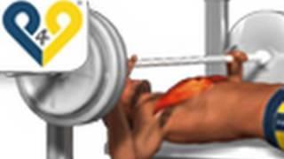 Chest Exercises: Bench Press