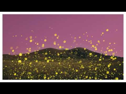 Tinie Tempah - Chasing Flies ft. Nea (Preview)