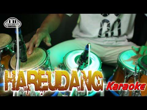 hareudang-karaoke-koplo-version