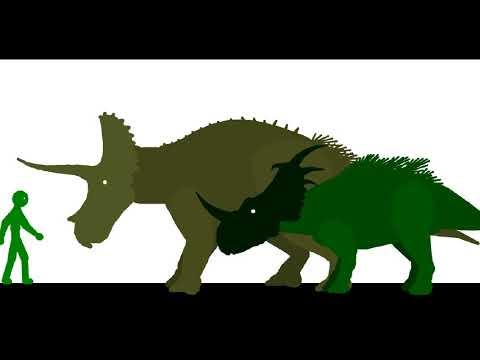 Ceratopsian Size Up