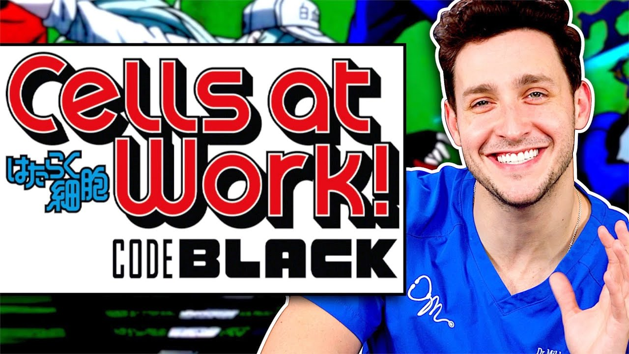 Download Doctor Reacts To Cells At Work: Code Black Ep #1