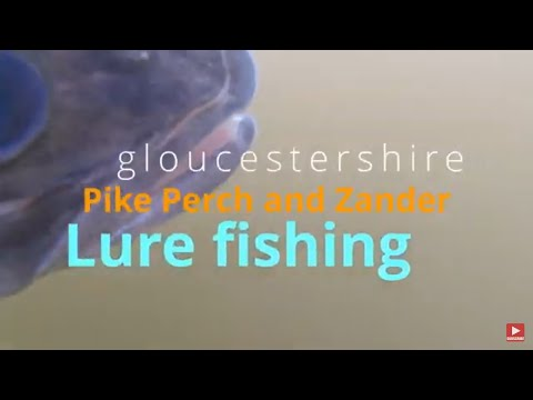 Gloucestershire Fishing Uk | River  Pike Perch And Zander Lure Fishing