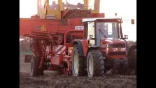 Kombajn ziemniaczany Grimme i Same Antares - maszyny w jednym ujęciu