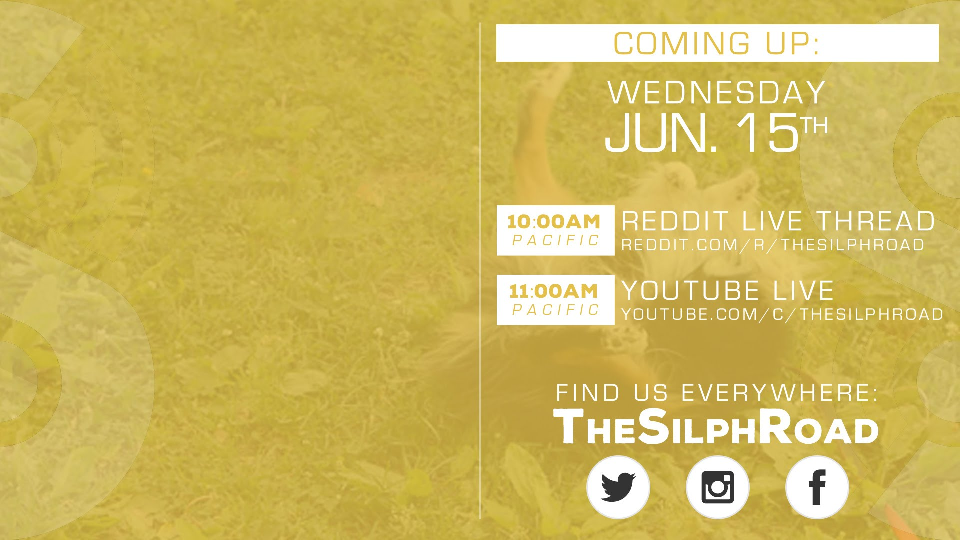 The Silph Road Live Stream