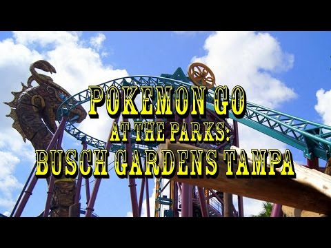 Pokémon GO At The Parks: (Busch Gardens Tampa Bay)