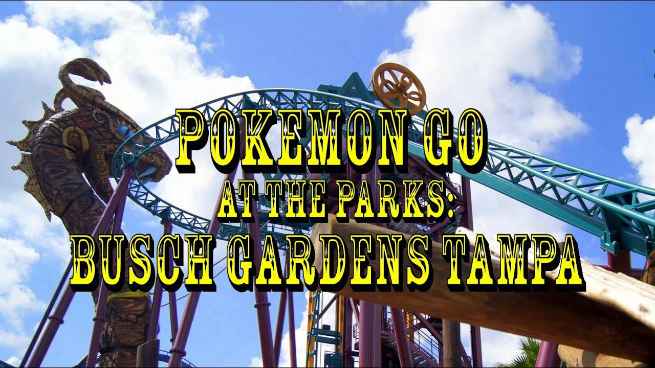 Pok Mon Go At The Parks Busch Gardens Tampa Bay Youtube