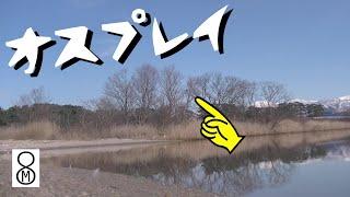 冬の晴れ間、河口に生きたオスプレイが…