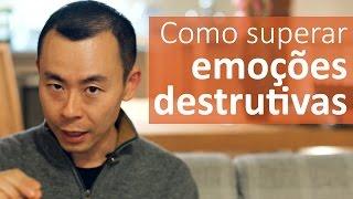 Como podemos superar emoções destrutivas? | Oi Seiiti Arata 15