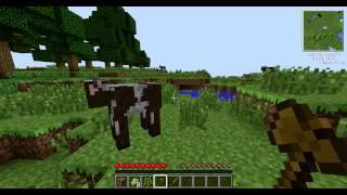 Random Minecraft 1