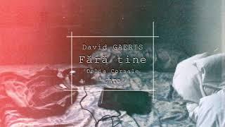David GAERIS - Fara tine (feat. Delia CorsaleGATO)