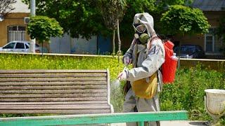 Специалисты МЧС начали в Дербенте мероприятия по дезинфекции
