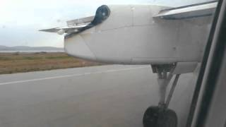 Aborted takeoff due to bird strike
