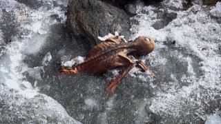 Alpejscy turyści dokonali makabrycznego odkrycia! [Człowiek lodu: tajemnicza śmierć]