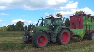 Zbiór traw sieczkarnią i przyczepą samozbierającą Usługi Rogowski Maszyny Rolnicze.