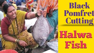 The great fish cutter ( in pune )