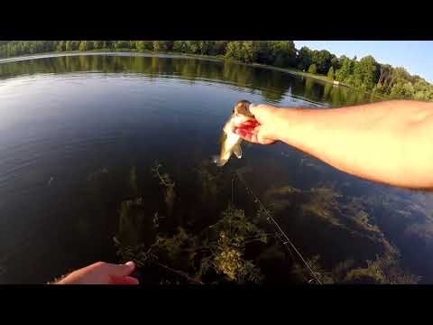 Fishing Lake Whittaker.