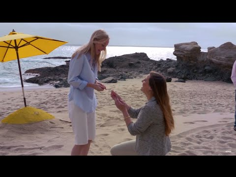 Surprise Marriage Proposal   #LoveIsLove   Absolut Colors