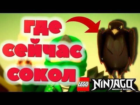 ГДЕ СОКОЛ В 11 СЕЗОНЕ ЛЕГО НИНДЗЯГО? КУДА ПОДЕВАЛСЯ СОКОЛ В LEGO NINJAGO? (Lego News-119)