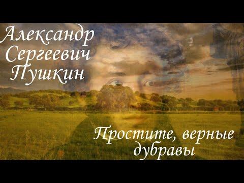 Стих для конкурса, посвящённый дню рождения А. С. Пушкина. Простите, верные дубравы.